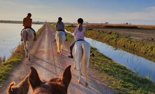 Excursión a caballo por el Delta del Ebro