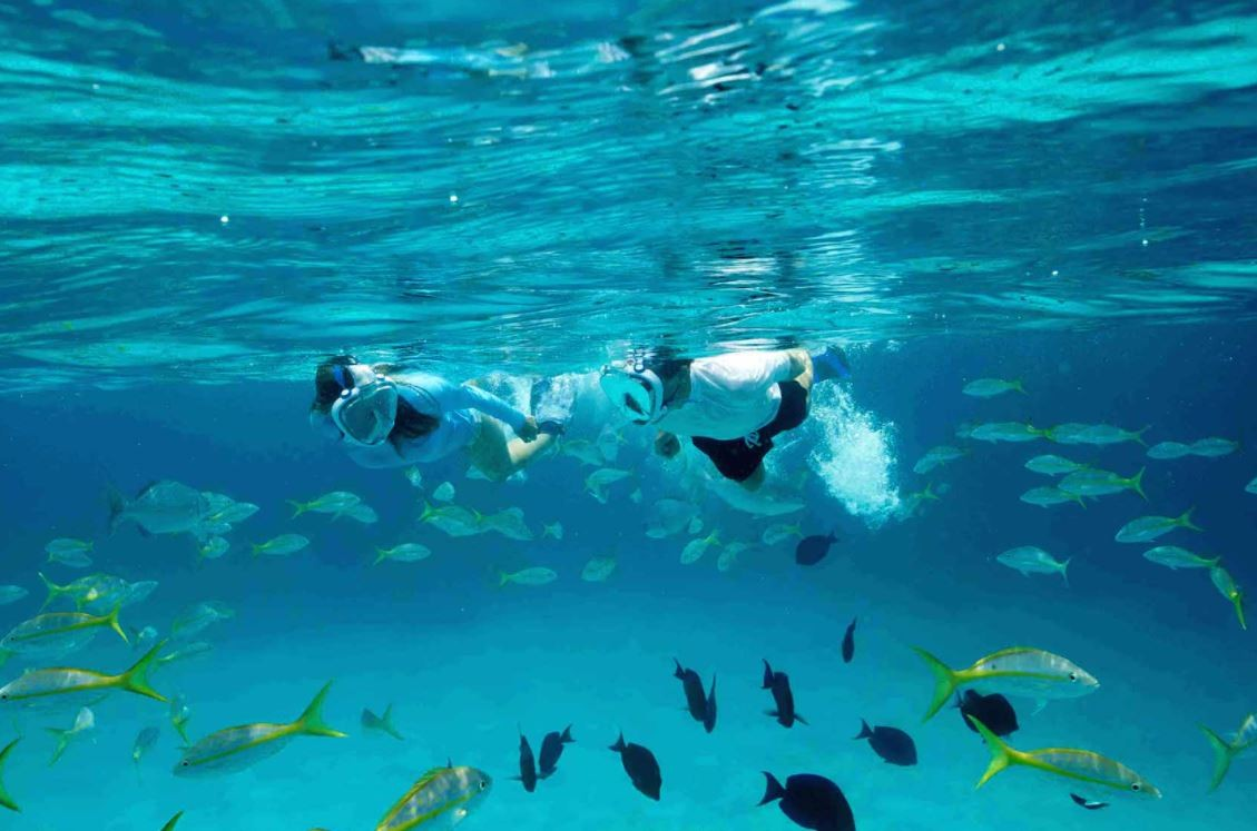 SNORKELLING IN THE MARINE RESERVE
