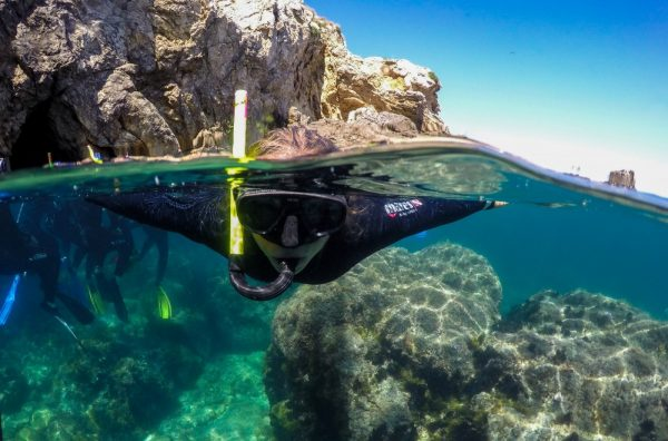 ECO-SNORKELLING IN THE MEDES ISLANDS